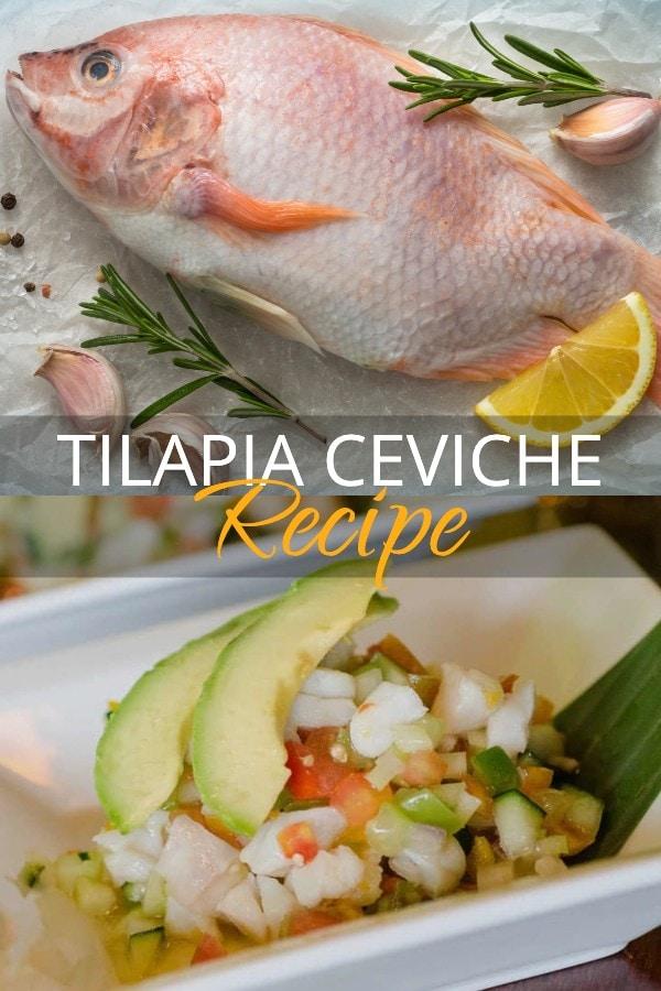 tilapia ceviche recipe