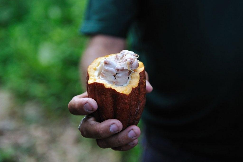 8 peruvian superfoods