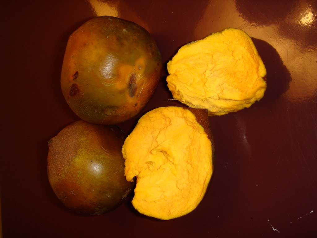 lucuma superfood from Peru