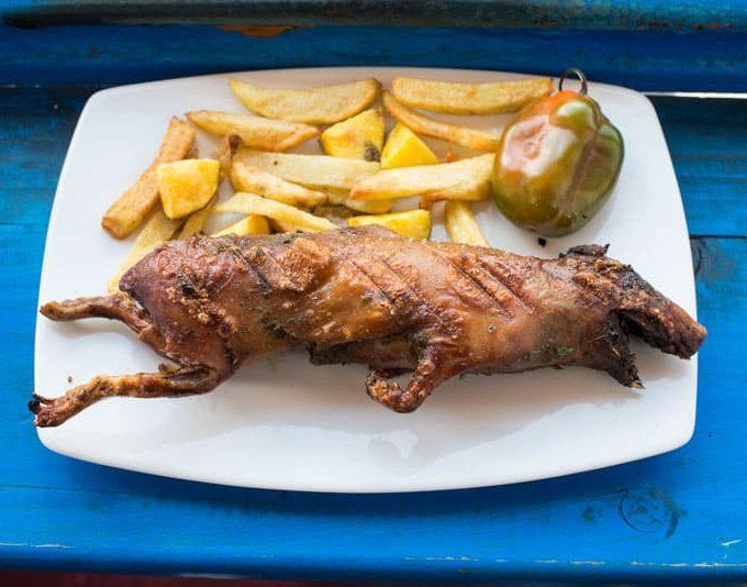 grilled guinea pig dish in the peruvian Andes at Cuzco Peru