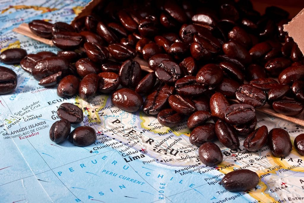 Coffee beans from organic Peruvian coffee