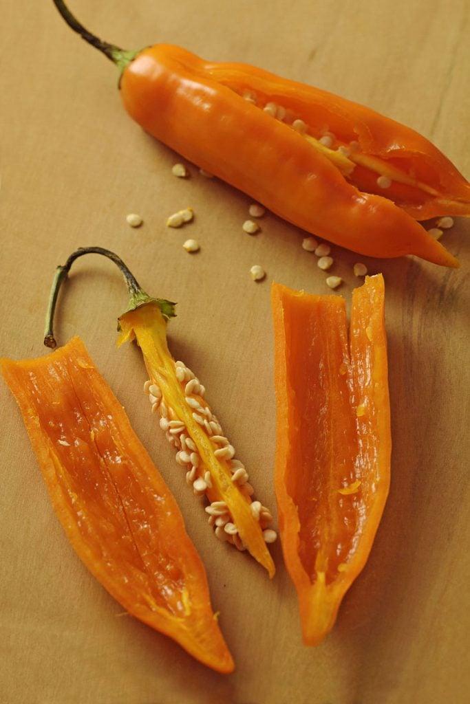ají amarillo peruvian chili pepper