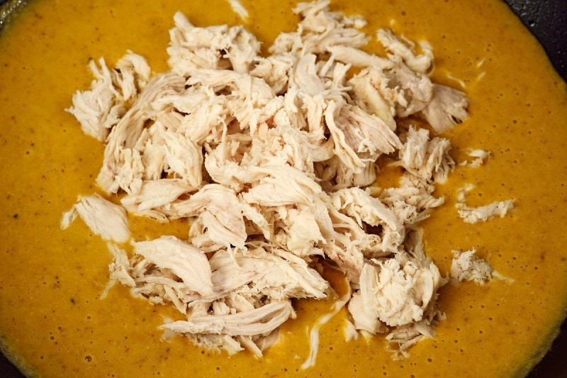 shredded chicken in blended ingredients
