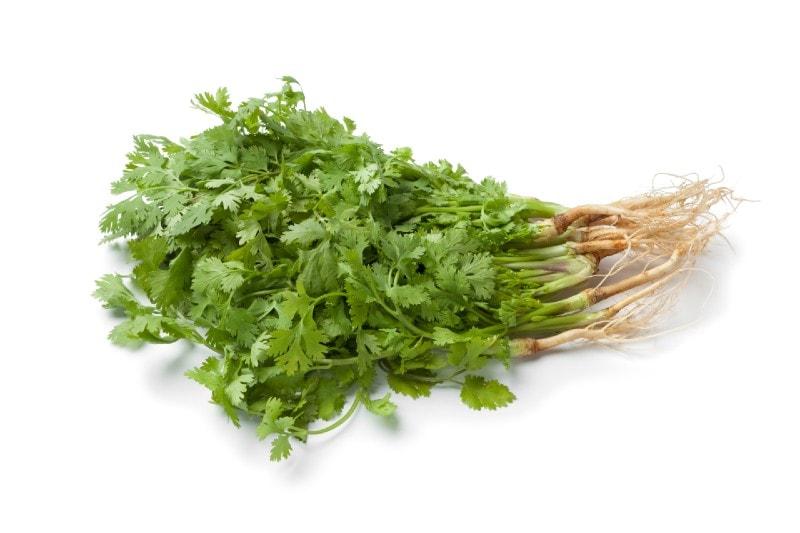 Peruvian Herbs: Food, Medicine and Culture all in One - Eat Peru