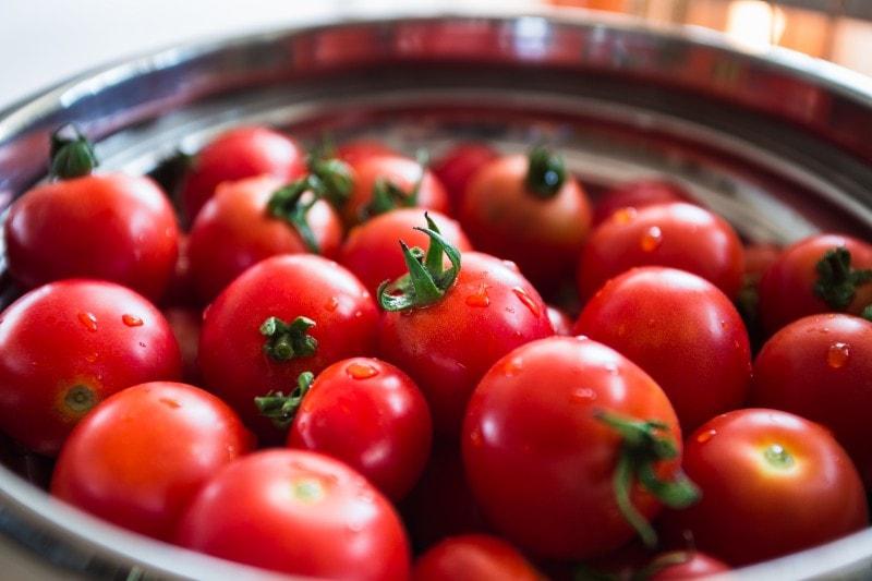 tomatoes indigenous food to peru