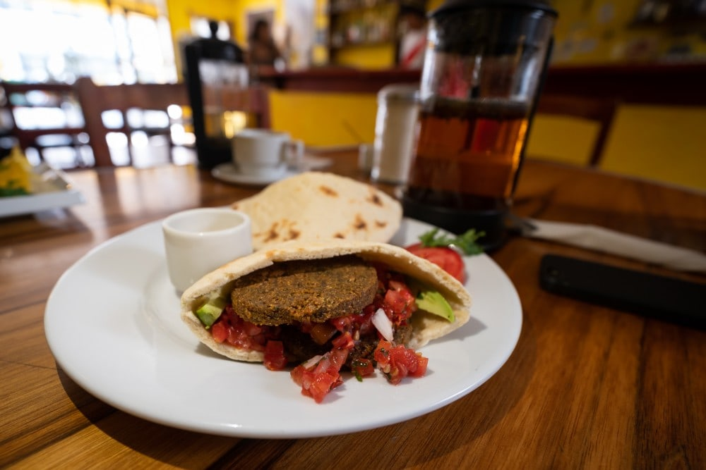 vegetarian falafel and avocado