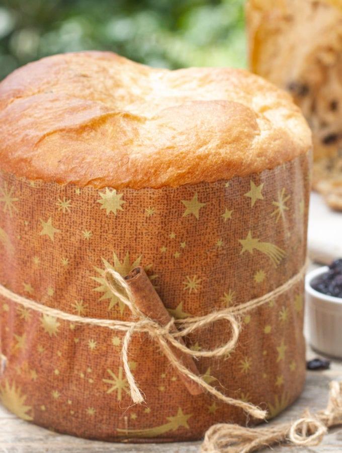 Peruvian panetón Christmas bread cake